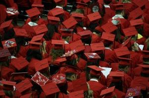 graduates-351603_1280